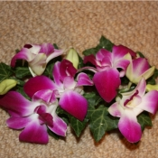 Corsage of Dendrobium Orchids